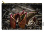 Sign Of Spring In Red Carry-all Pouch
