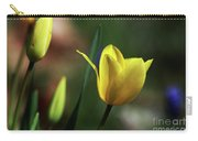 Signs Of Spring II Carry-all Pouch