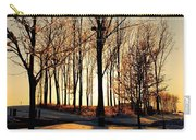 Silhouette Of Trees And Ice Carry-all Pouch