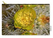 Silver Cholla Cactus Carry-all Pouch