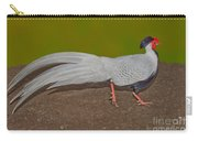 Silver Pheasant In Strutting Pose Carry-all Pouch