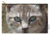 Silver Tabby But What Color Eyes Carry-all Pouch