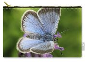 Silvery Blue Butterfly Carry-all Pouch