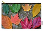 Similar But Different Carry-all Pouch by Frozen in Time Fine Art Photography