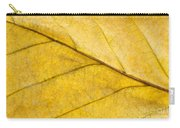 Simply Beech Carry-all Pouch