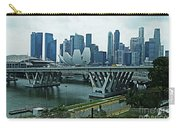Singapore 14 Carry-all Pouch