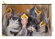 Singing For Supper Carry-all Pouch by Bill Pevlor