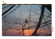 Singing Songs Of Spring Carry-all Pouch