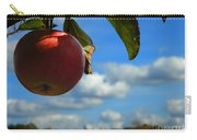 Single Apple Carry-all Pouch