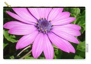 Single Pink African Daisy Against Green Foliage Carry-all Pouch