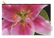 Single Stargazer Lily Carry-all Pouch