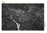 Single Tree With New Spring Leaves In Black And White Carry-all Pouch