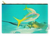 Singray City Cayman Islands Three Carry-all Pouch
