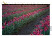 Skagit Valley Blazing Sunrise Carry-all Pouch