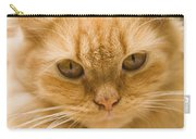 Skc 1483 Unconcerned Stare Carry-all Pouch