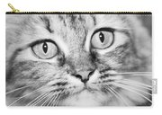 Skc 1498 Wide Eyed Carry-all Pouch