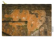 Skc 3277 Abstract By Age Carry-all Pouch