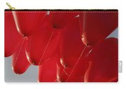 Skc 0029 Unity In Flying Carry-all Pouch