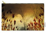 Autumn Lights Sky Colors  Carry-all Pouch