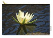 Sky Reflections Carry-all Pouch
