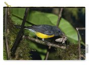 Slate-throated Redstart Carry-all Pouch