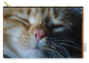 Sleeping Abby Framed Carry-all Pouch