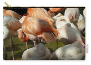 Sleeping Beauties Carry-all Pouch
