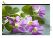 Sleeping Beauty Carry-all Pouch by Jan Bickerton