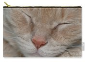 Sleeping Cat Face Closeup Carry-all Pouch