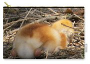 Sleeping Chick Carry-all Pouch
