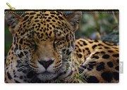Sleeping Jaguar Carry-all Pouch