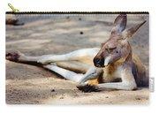 Sleeping Kangaroo Carry-all Pouch