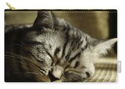 Sleeping Pet Carry-all Pouch