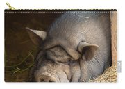 Sleeping Pig Carry-all Pouch
