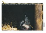 Sleeping Potbelly Pig Carry-all Pouch