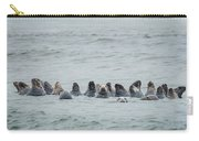 Sleeping Seals Carry-all Pouch