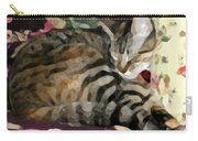 Sleeping Tabby Carry-all Pouch