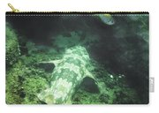 Sleeping Wobbegong And School Of Fish Carry-all Pouch