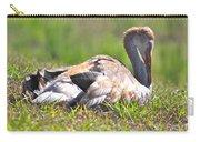 Sleepy Baby Sandhill Crane Carry-all Pouch