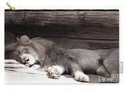 Sleepy Beauty Carry-all Pouch