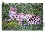 Sleepy Cheetah Carry-all Pouch