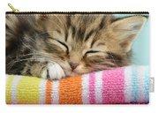 Sleepy Kitten Carry-all Pouch