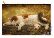 Sleepy Kitty Carry-all Pouch