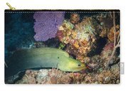 Slithering Moray Carry-all Pouch