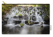 Small Cascade In Marlay Park Carry-all Pouch
