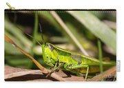 Smaragd-green Grasshopper Carry-all Pouch