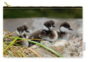 Smew Ducklings On Shore Carry-all Pouch