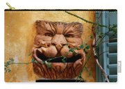 Smiling Cat Mail Box Carry-all Pouch