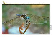 Smiling Dragon Fly Carry-all Pouch