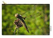 Smiling Dragonfly Carry-all Pouch